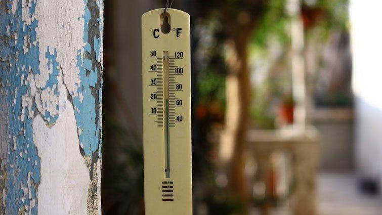 【黃瑽寧醫師專欄】氣候變遷和感染性疾病有關!