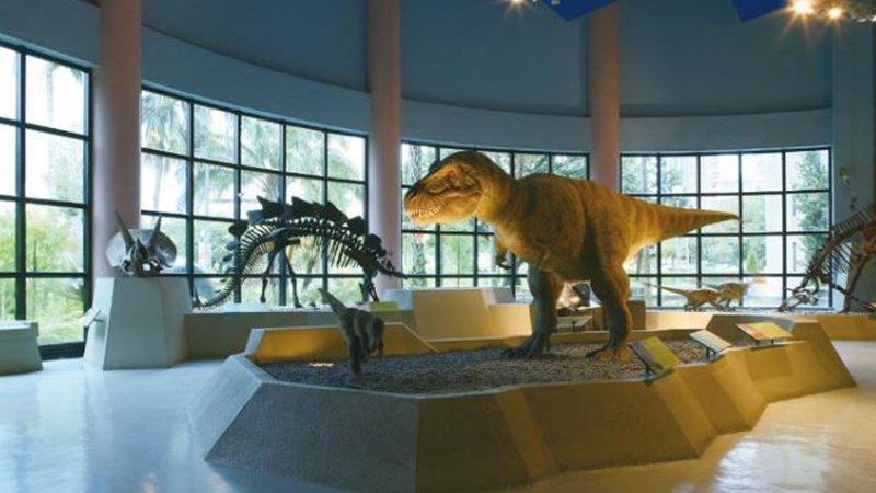 勇闖侏儸紀!恐龍迷爸媽不可錯過的北中南博物館篇