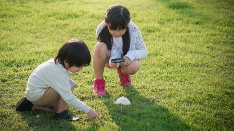 葉丙成:世界變化如此快,我們該怎麼教孩子?