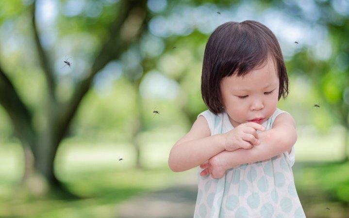 不再抓破皮!異位性皮膚炎孩子的夏日防蚊蟲叮咬對策