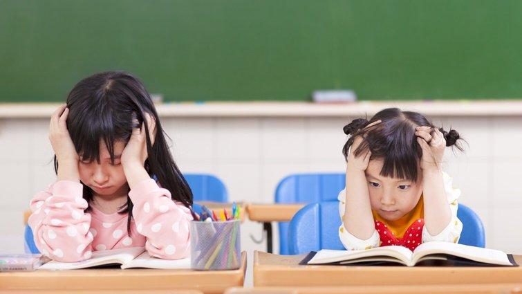 洪蘭:補救教學只能上國英數?