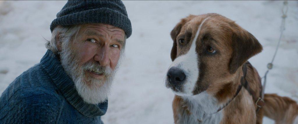 「最猛狗派」哈里遜福特化身療癒系大叔 《極地守護犬》滿滿正能量奪91%觀眾滿意度