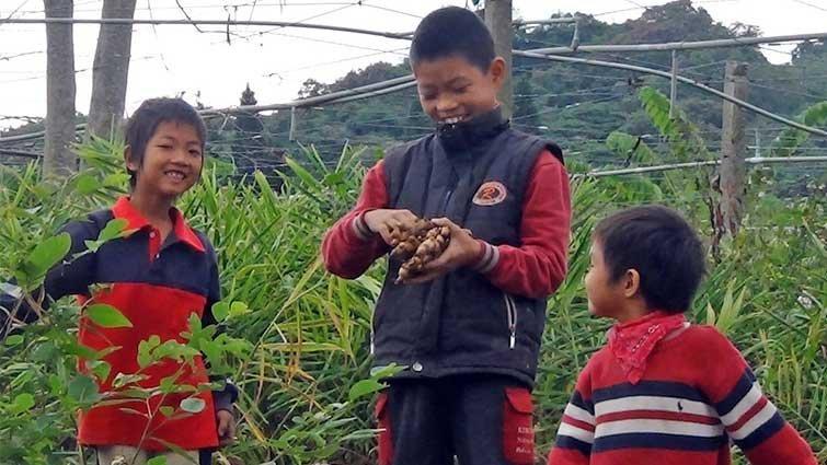 順應自然 開啟孩子五感的教育~羅傑農場