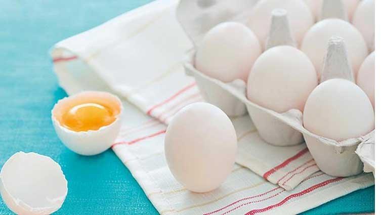 小農教你一件事/雞蛋選粗殼還細殼?