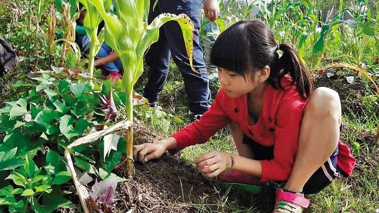 民族大愛巴楠花部落小學:跟著4季設計主「祭」課程