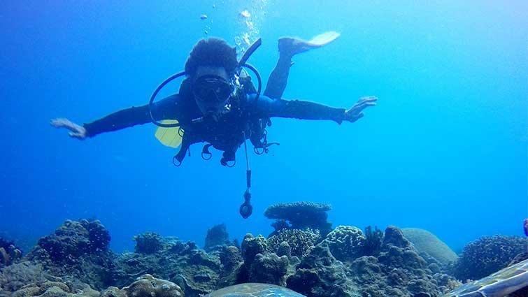 小琉球:淨灘.潛水  保育綠蠵龜