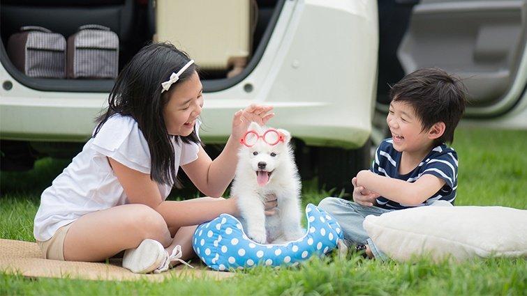 何翩翩:讓孩子從養寵物的過程,學會付出與同理