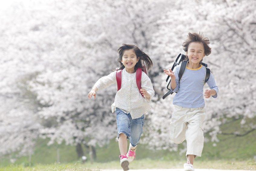 美味與保健兼具:益生菌可可條照顧學齡兒童身體健康