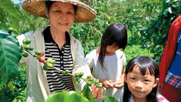 山峰華德福實驗小學:社區力量搶救來的實驗奇蹟