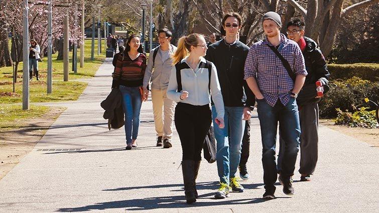 陳之華:澳洲教育政策,不只有一所「台大」