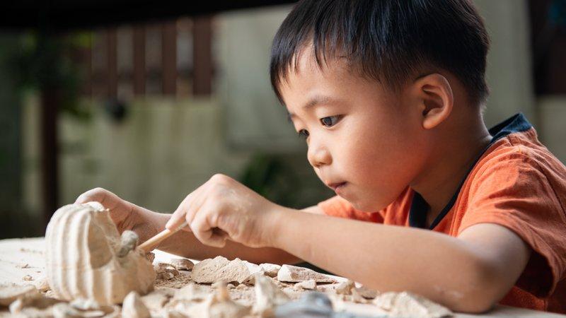 動手學科學,自製恐龍爪、觸摸真化石