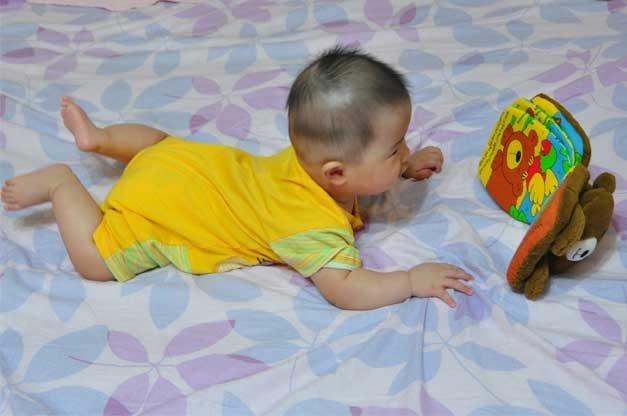 五個月的好奇寶寶正盯著她的第一本書。
