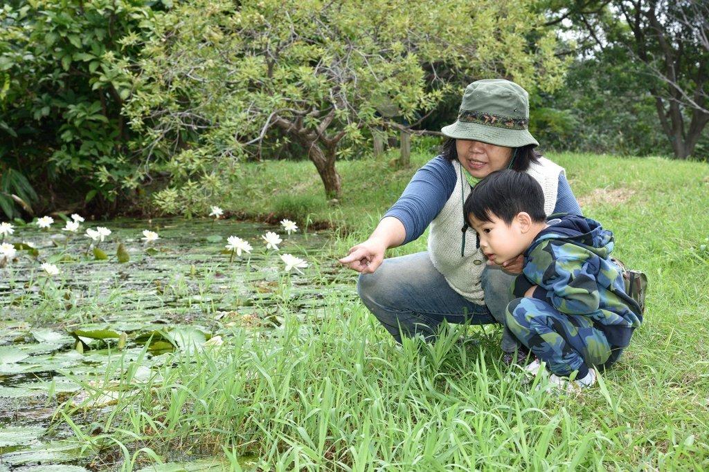 來關渡,親子一起品味四季 - 關渡自然公園,四季生態分明的聖域