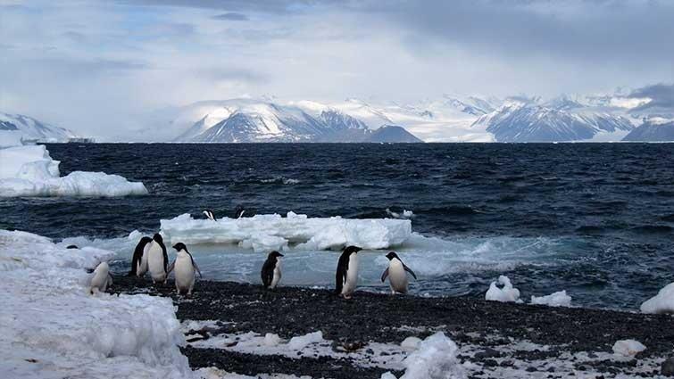 來到世界的盡頭,守護最後的海洋