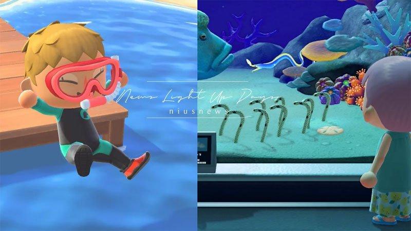 《動物森友會》夏季免費更新送「潛水鏡附呼吸管」!可以在海裡游泳捕捉海洋生物