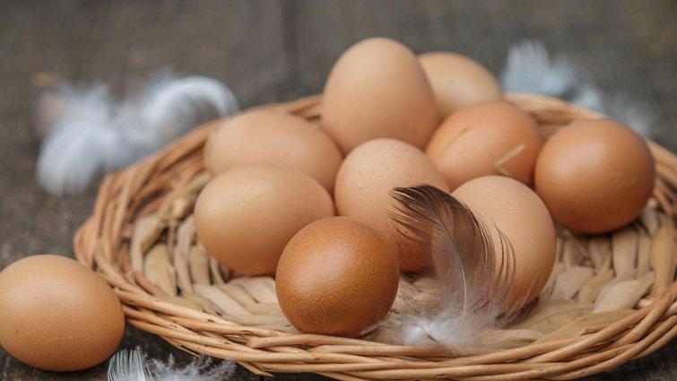毒雞蛋含芬普尼,該怎麼吃雞蛋?