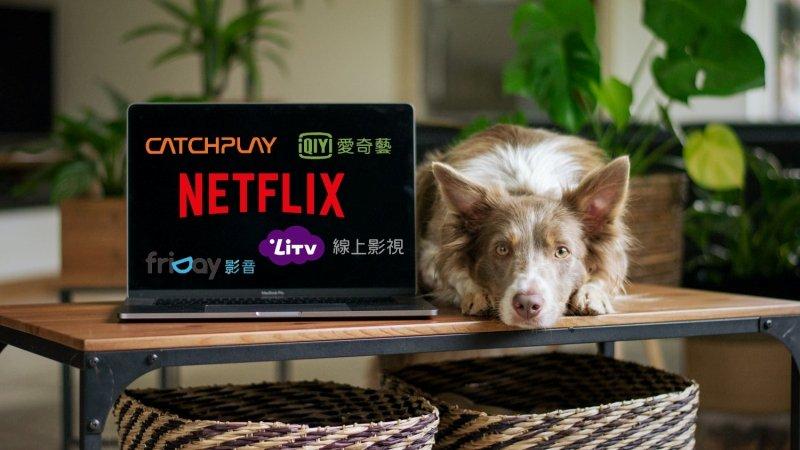 5家線上影音平台優缺點分析:Netflix、愛奇藝、LiTV、CATCHPLAY、Friday影音