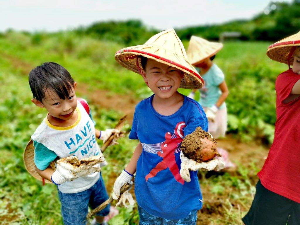 2020國產雜糧十大經典體驗路線 農糧署邀您一起到