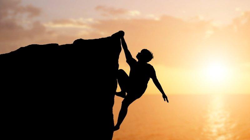 蔡璧名:從「庖丁解牛」看專業,是心身能力的具體延伸