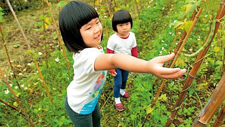 淡水‧幸福農莊:從土壤到餐桌  拔菜洗菜自己來