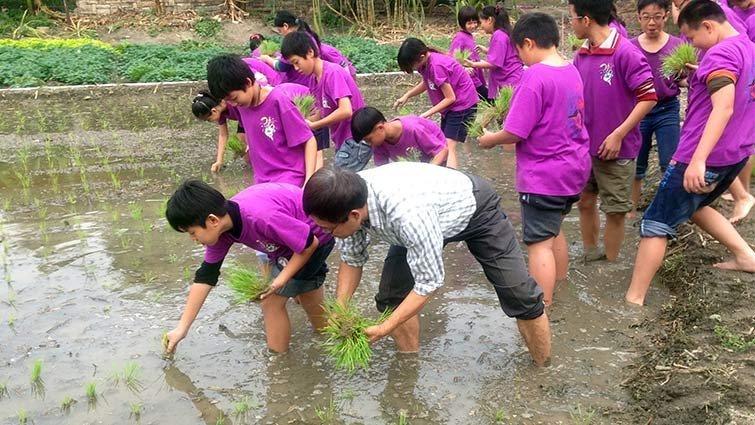輪種稻米玉米 翁園藉農務體會四季榮枯
