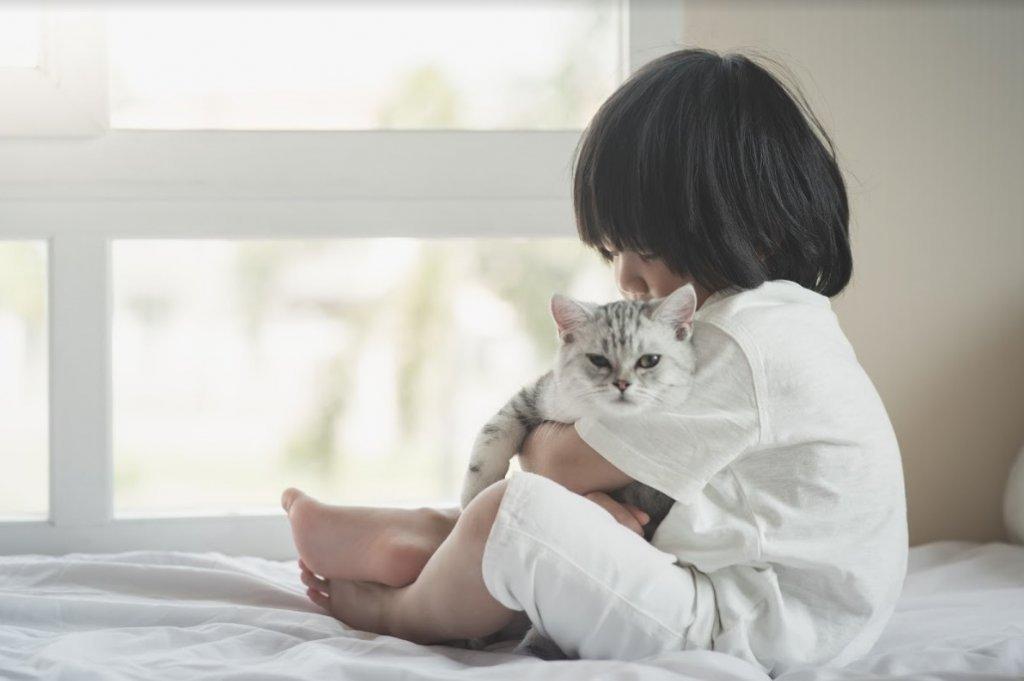 洪蘭:趁早教孩子認識情緒