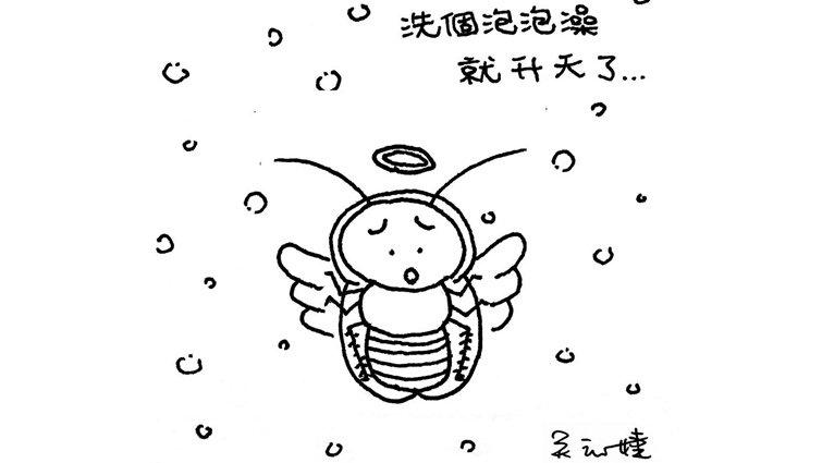 夏天小強出沒!昆蟲老師教學3秒調製滅蟑妙招