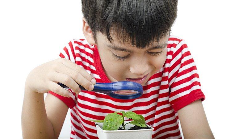 孩子是天生的科學家!《小學生STEAM實驗室》開啟孩子進入科學世界的第一步