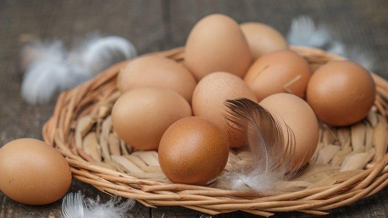 褐色雞蛋比較營養?選小不選大,挑雞蛋3秘訣