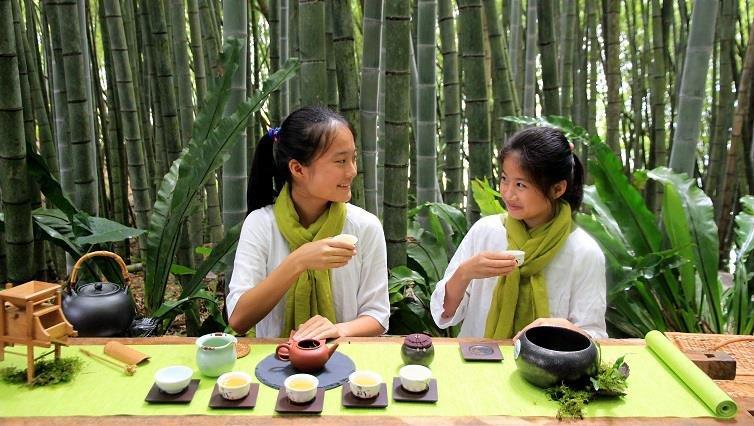 小小泡茶師,茶覺之旅學採茶泡茶-【小小職人體驗全搜集】