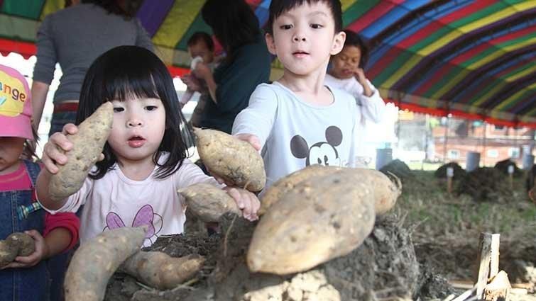 食農小旅行:暖上心坎的竹東地瓜