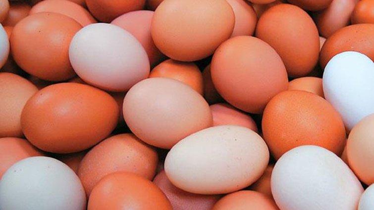 雞蛋驗出「世紀之毒戴奧辛」! 避險7招馬上看
