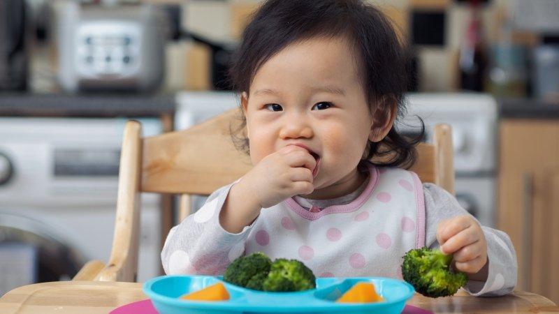 1歲起養成孩子餐桌好習慣,健全齒顎發展!