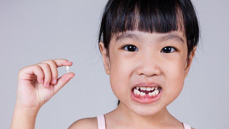 換牙期的7個迷思:乳牙掉了半年還沒長恆牙,會有問題嗎?