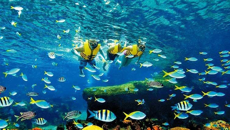 島嶼假期  天海相連跳島遊