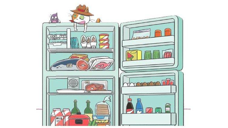 【給父母的科普知識私藏包】食物為什麼會壞掉?