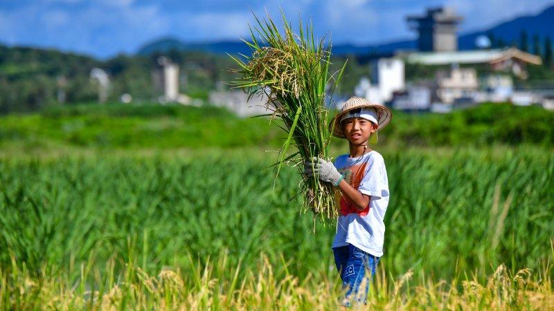 2019教育創新100|以大地為師 春雷環境學社為孩子心中播下愛農種子