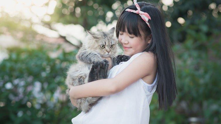 黃瑽寧:狗與貓中毒事件