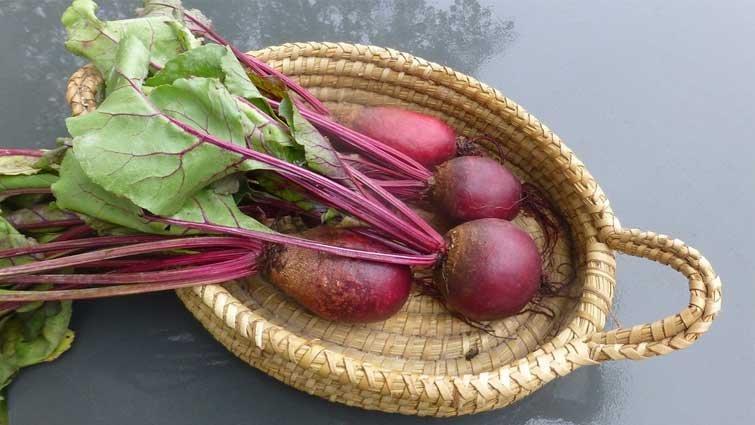 甜菜根紅得發紫 生機飲食大明星