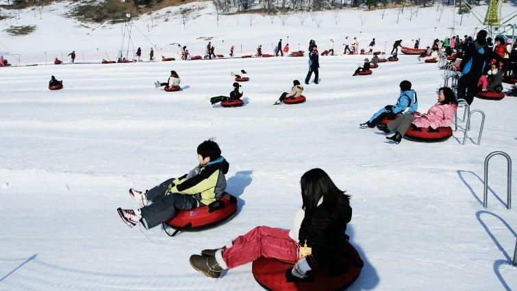 給孩子每一個不同階段的旅遊回憶 樂園、滑雪、生態  寫一篇豐富的寒假日記