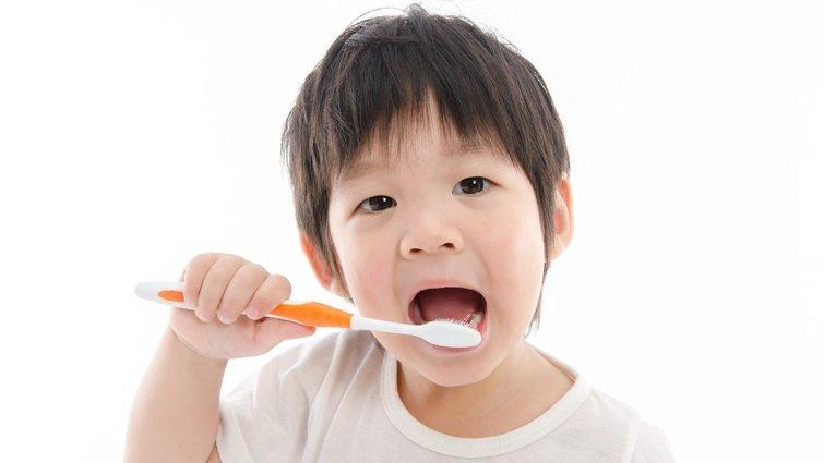 何時該掛牙科急診?牙髓醫師提供紅綠燈簡單判斷