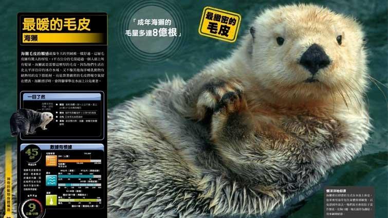最暖的毛皮 – 海獺