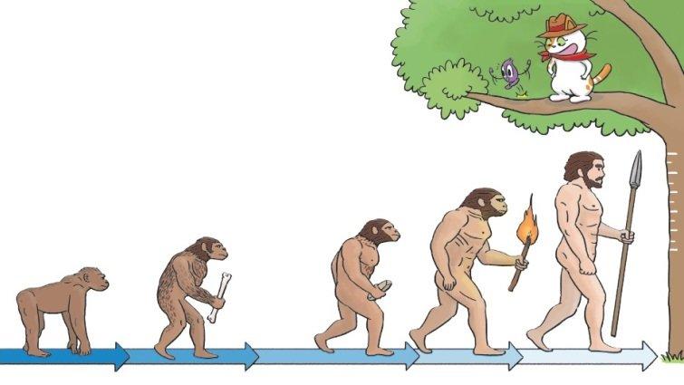 【給父母的科普知識私藏包】人是猴子變成的嗎?