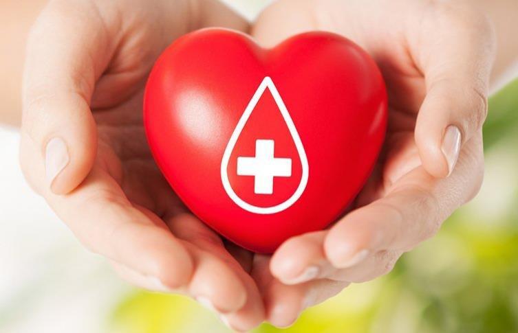 【普悠瑪事故】全台捐血、相關諮詢專線總整理