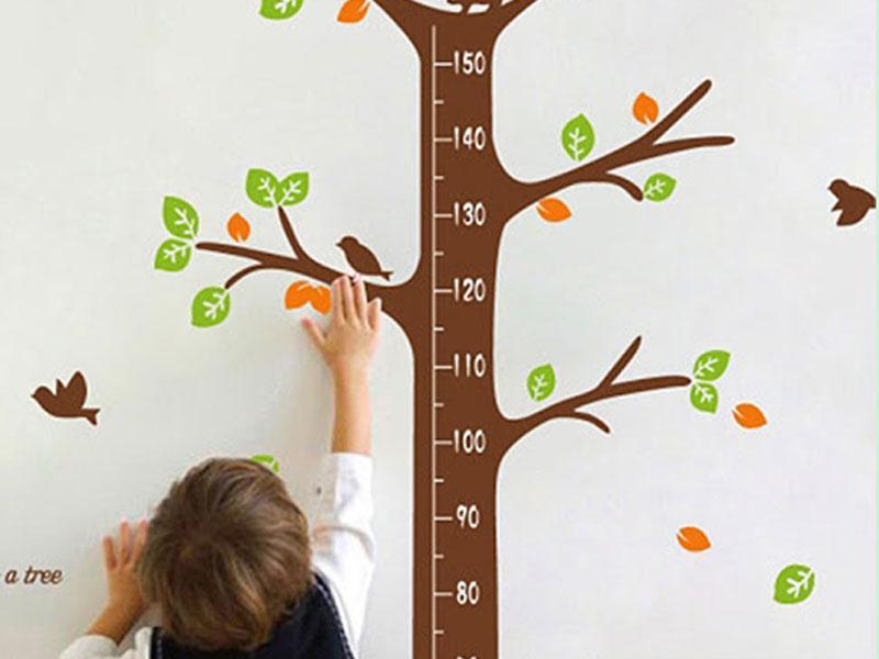 孩子,你要長得像大樹一樣高!─兒童補鈣和骨骼發育