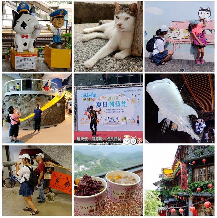 《新北一日遊》猴硐貓咪天堂、九份黃金山城、國立海洋科技博物館輕鬆玩~
