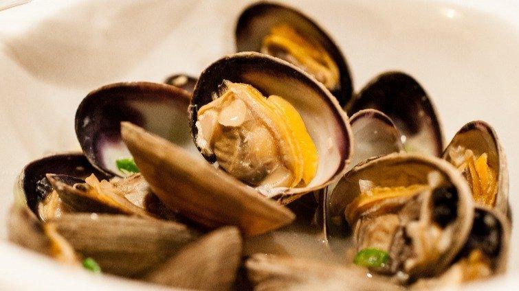 幸福恬淡海滋味──3分鐘日式酒蒸蛤蜊