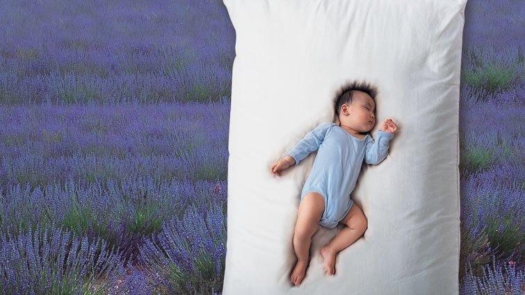 黑幼龍:慢慢養,讓孩子像花一樣長大
