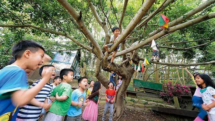 新竹縣道禾幼兒園:三千坪綠地讓孩子適性探索