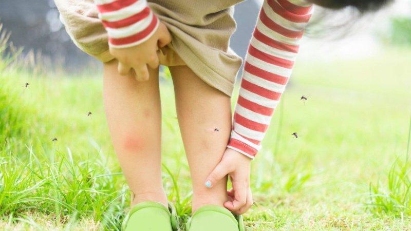 防蚊液天然的尚好?你過去可能只是「擦心安」?